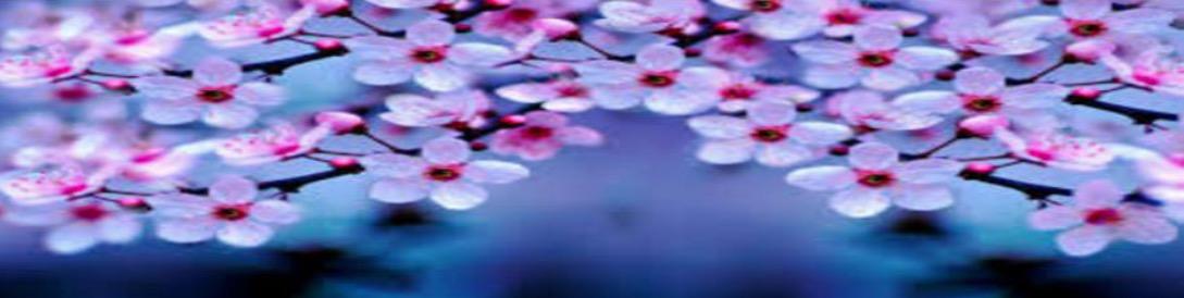Spring water flowers
